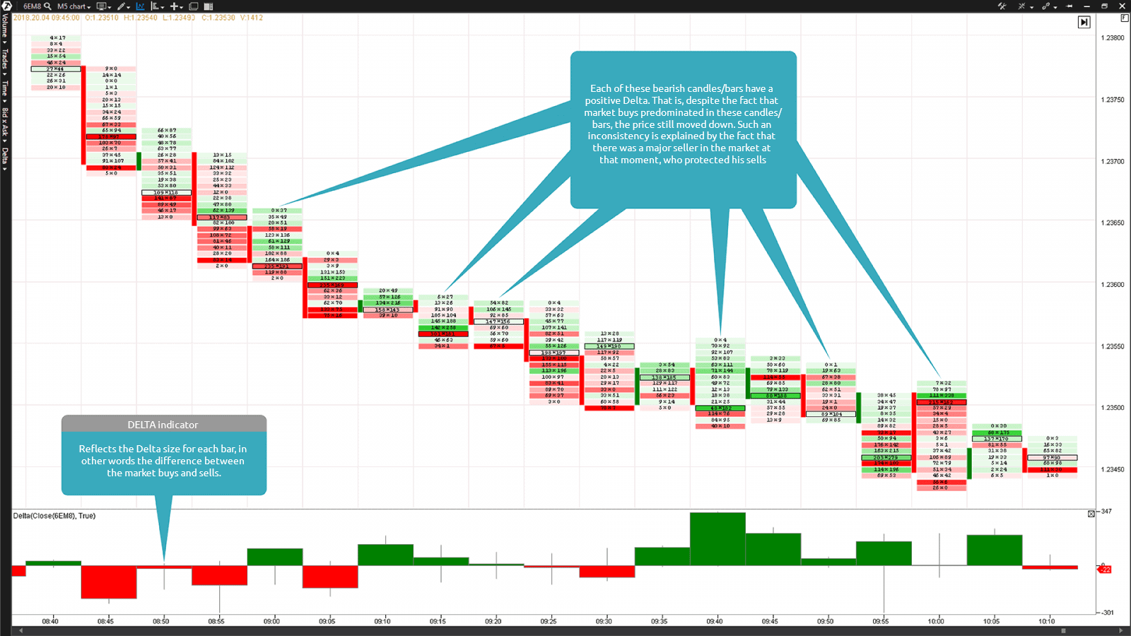 The Bid x Ask Footprint chart and Delta indicator in the lower part of the chart
