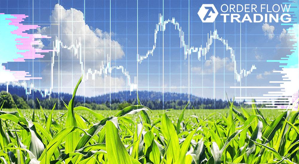 Торговля кукурузой на бирже скачать музыку форекс