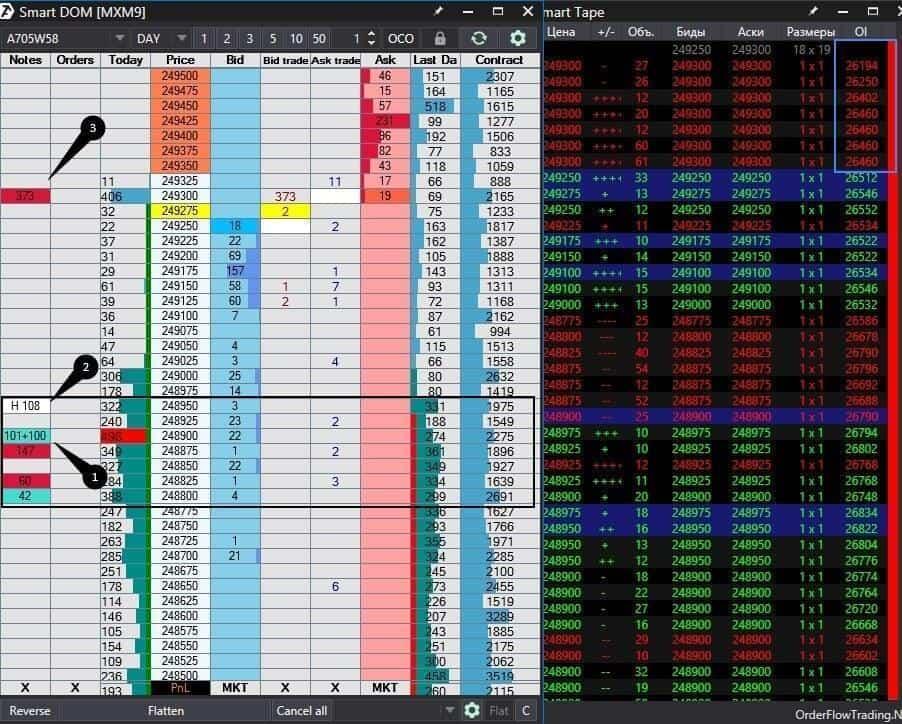 index futures (MXM9)