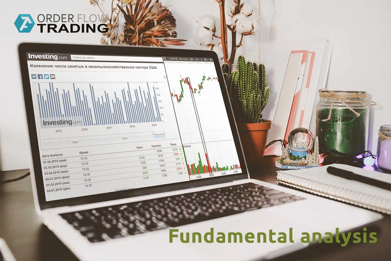 7 features for the fundamental analysis of the fx market