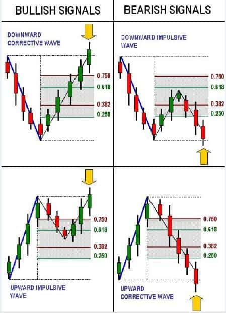 Rules of the Forex strategy