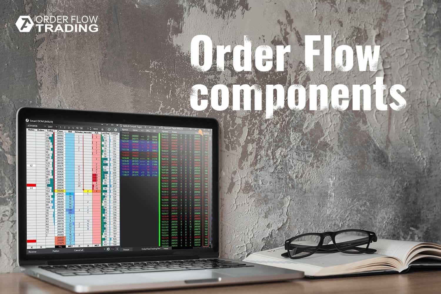 TOP-5 advice for beginner traders: how to read the order flow.