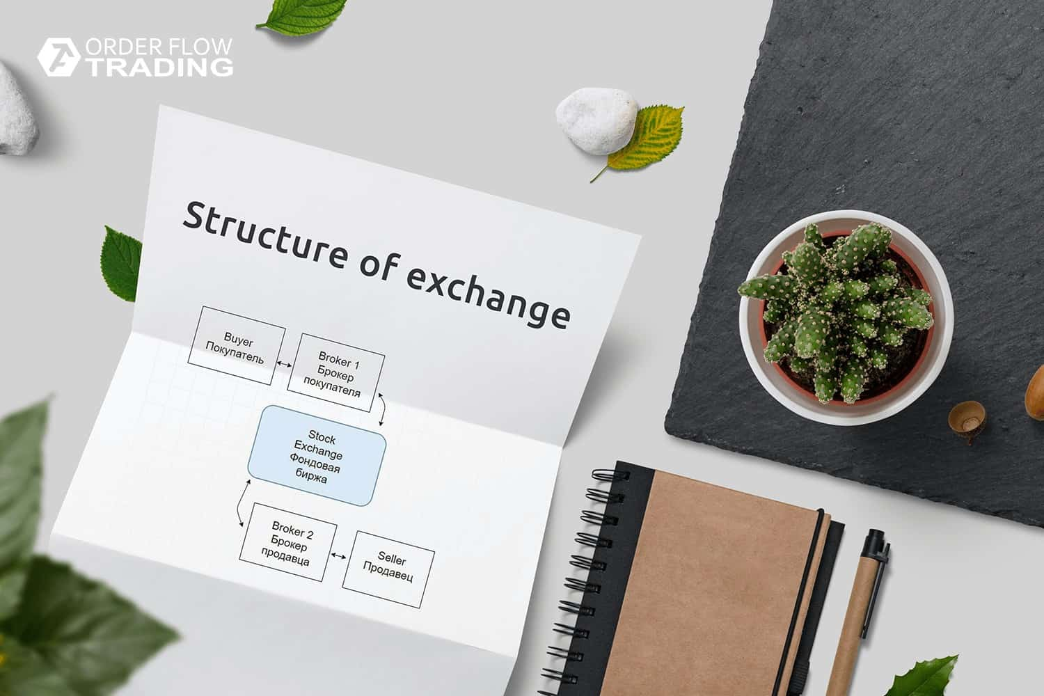 Organizational structure of the exchange