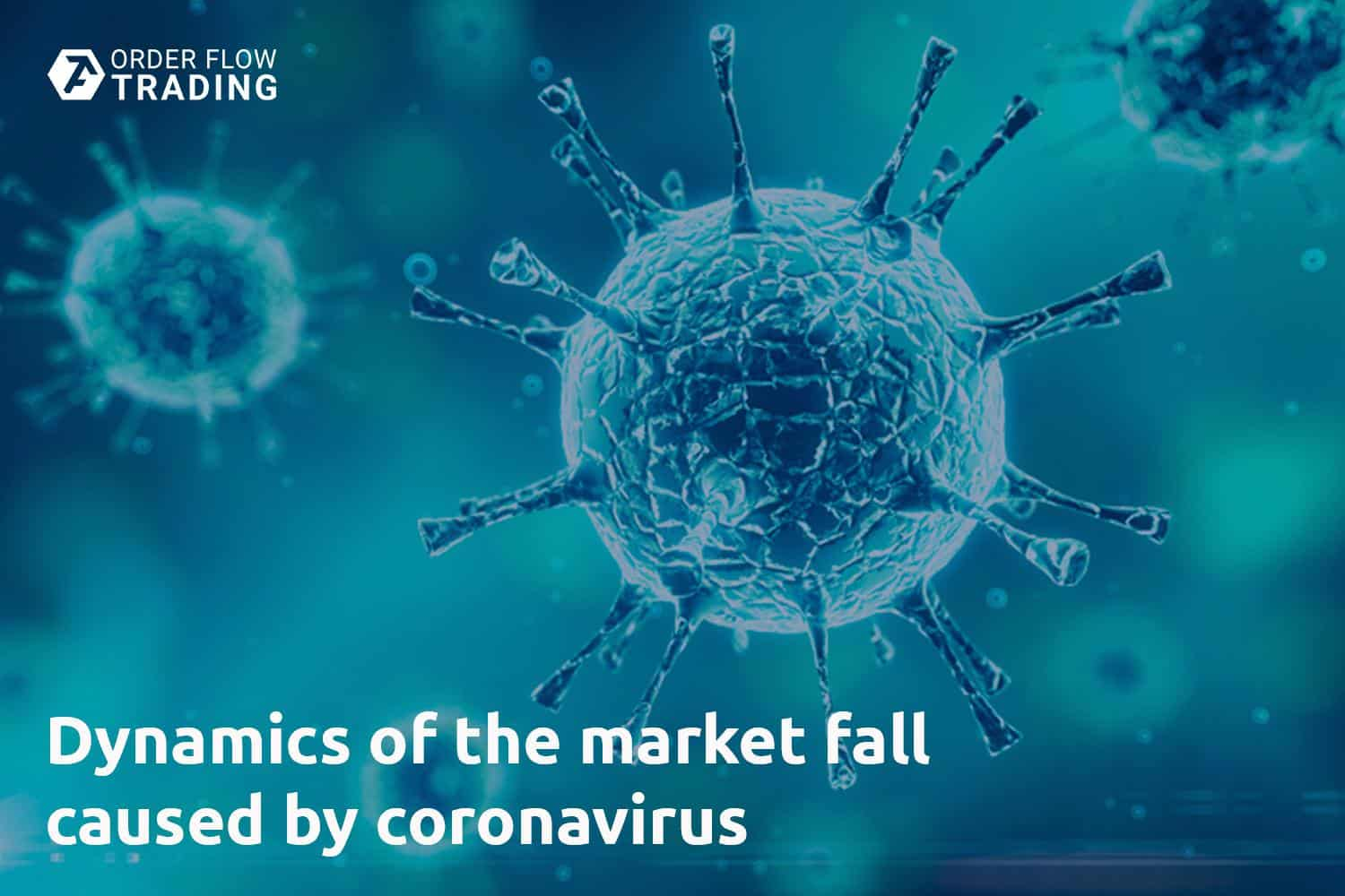 Dynamics of the market fall caused by coronavirus