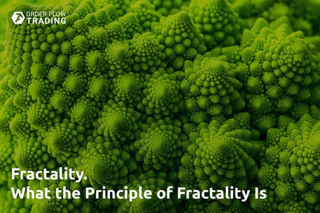 Fractality. What the principle of fractality is