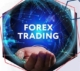What a beginner should know before starting to trade on Forex